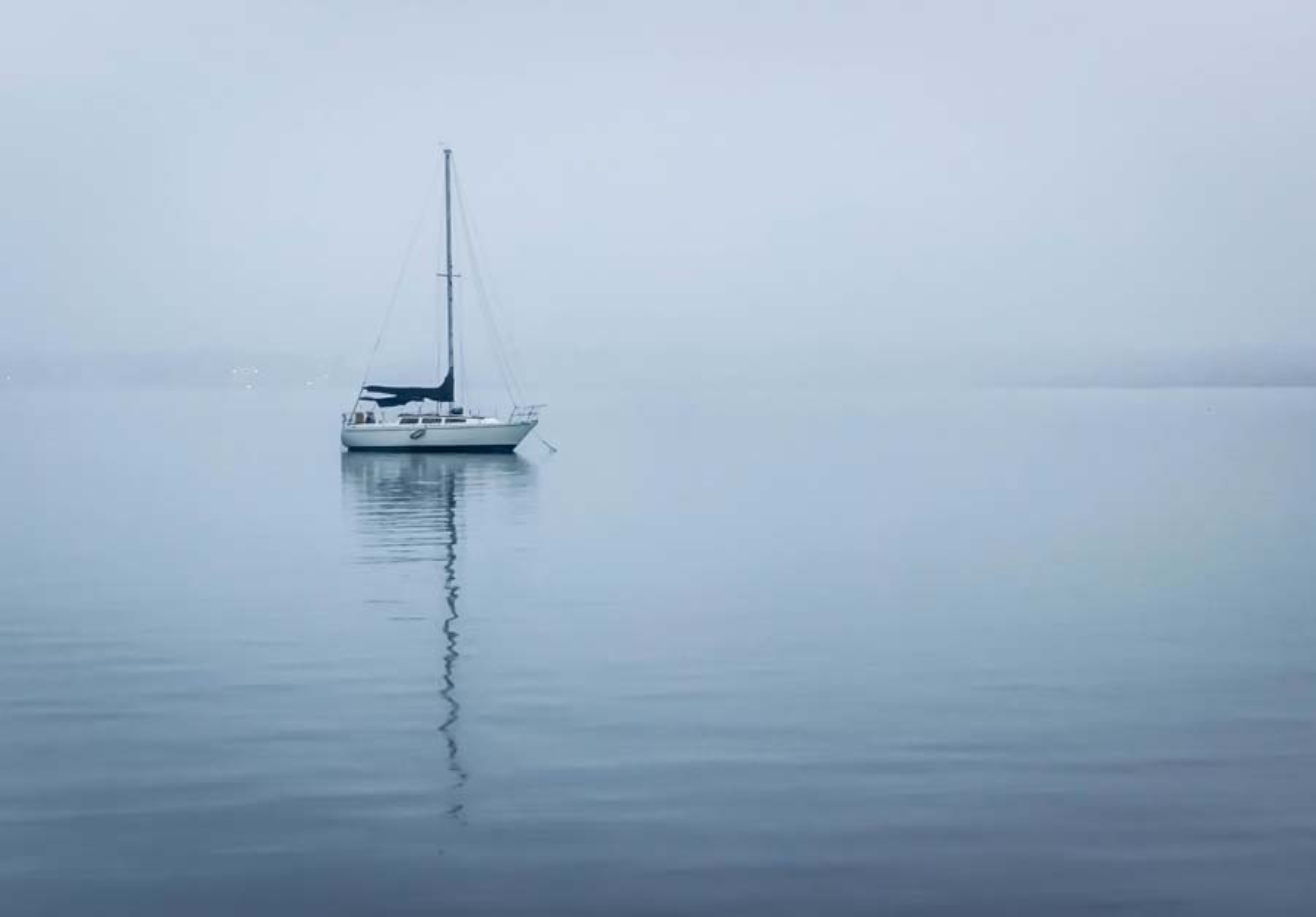 Foggy bay, USA
